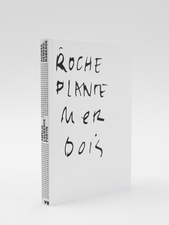 Roche Plante Mer Bois